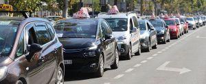 Novosadske taksiste