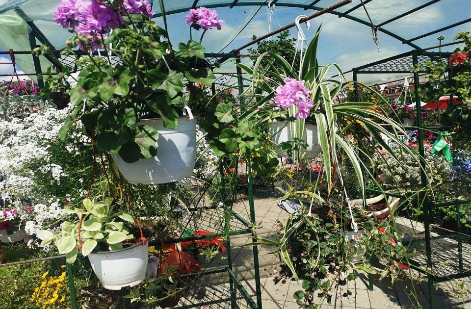 Četvrta Cvetna pijaca danas i sutra na platou ispred Spensa