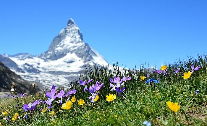 Švajcarska najbolja zemlja za život i posao
