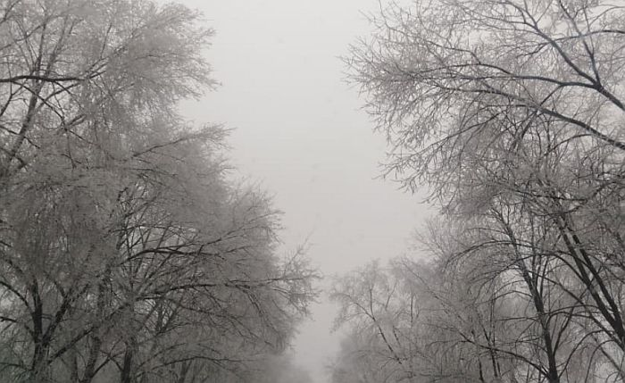 Hladno, tmurno, u subotu kiša, u nedelju susnežica