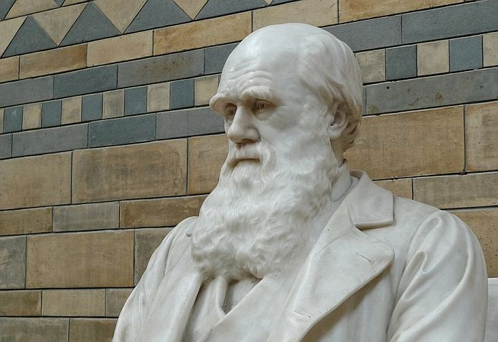 Darvinove beležnice nestale iz Kembridžove biblioteke
