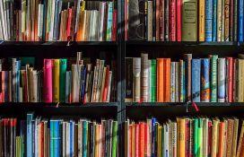 Deset romana u užem izboru za NIN-ovu nagradu