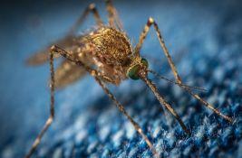 Virus Zapadnog Nila detektovan kod komaraca u Novom Sadu i Beočinu
