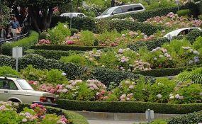 San Francisko će naplaćivati razgledanje najkrivudavije ulice na svetu