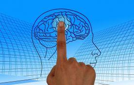Otkriveno kako ljudi funkcionišu sa samo jednom polovinom mozga