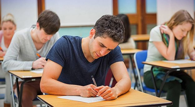 Vredne male bubice - kako studirati lako