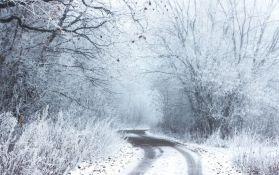 Severni deo Evrope očekuju niže, a južni više temperature ove zime