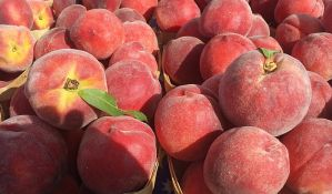 Osumnjičeni za pranje novca u slučaju nelegalnog izvoza voća u Rusiju uhapšen u Nišu