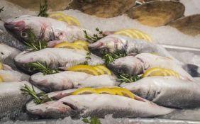 Svetski fond za prirodu: Evropa je ostala bez ribe