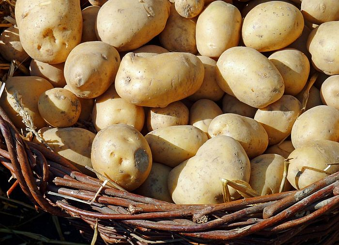 Ministarstvo reagovalo na vest da Novosađani pomažu domaćim proizvođačima krompira koje uništava uvoz
