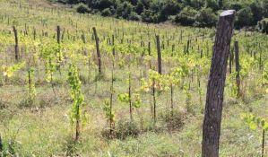 Šta se crni u Karlovačkim vinogradima: Građani se žale na masne slojeve na automobilima i stolovima