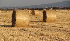 Holandija koja je veličine Vojvodine izvozi hranu za 90 milijardi dolara, a Srbija za 3,6 milijardi