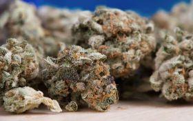 Virdžinija korak bliže legalizaciji marihuane od 2024. godine