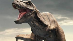 Tiranosaurus reks je imao prirodni klima uređaj u glavi