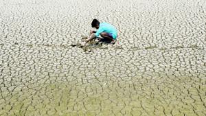 Klimatske promene u sedam tačaka: Gde smo, gde idemo i koliko je loše
