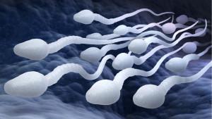 Kontraceptivna pilula za muškarce – zašto i dalje čekamo