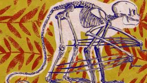 Nauka, ljudi i životinje: Neobična evolucija - nestvarna budućnost života na Zemlji