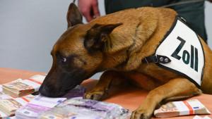 Pas tragač nanjušio 250.000 evra na aerodromu u Frankfurtu