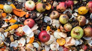 Korona virus i bacanje hrane: Više od 900 miliona tona hrane se baci svake godine