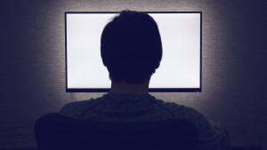Štetni softver sa porno sajtova zarazio mrežu američke vlade