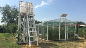 Tehnologija i poljoprivreda: Pametna staklena bašta - srpski inženjeri pronašli način za gajenje voća i povrća iz fotelje