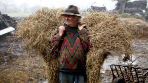 Upoznajte farmera koji je pronašao sreću u staromodnom načinu života