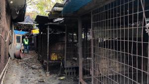Južna Koreja zatvara najveću klanicu pasa