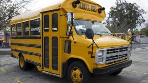 Škola, rasizam i nasilje: Otac traži milion dolara odštete zbog šišanja njegove ćerke u školskom autobusu