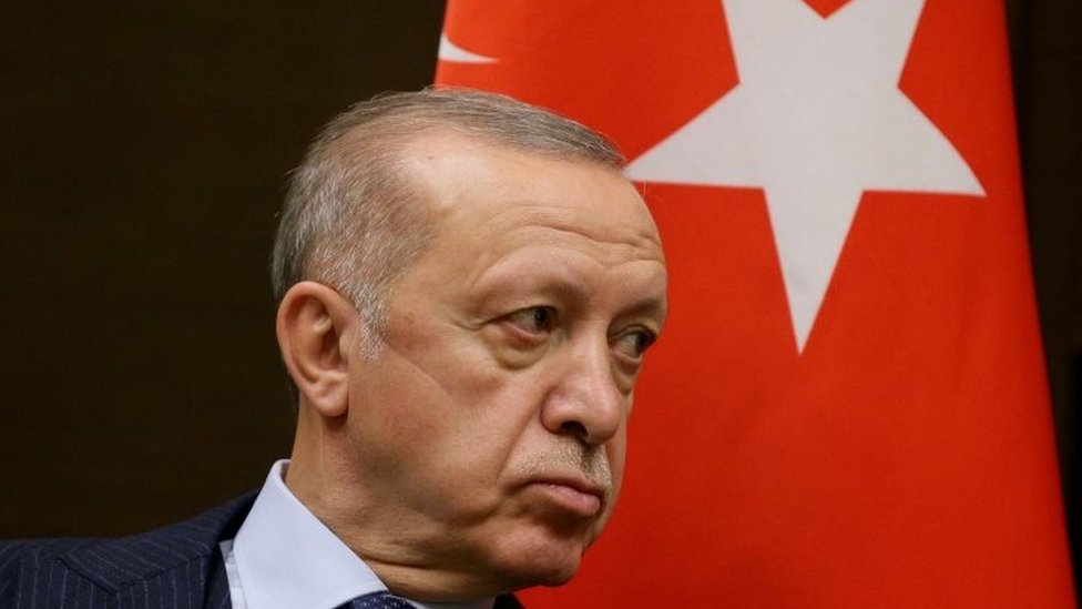 Turska i politika: Erdogan proteruje ambasadore SAD, Francuske, Nemačke i još sedam zemalja