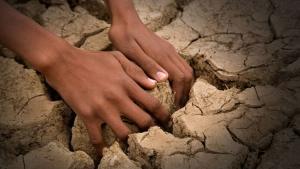 Klimatske promene: Poslednji je trenutak za spas planete, kažu naučnici
