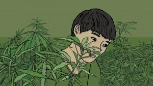 Kako je dečak iz Vijetnama postao rob na britanskoj farmi kanabisa