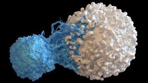 Na pragu velikog otkrića: Prvi korak ka leku
