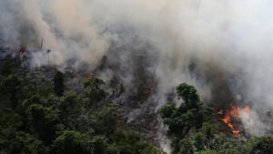 Amazonija i požari: Brazilske kišne šume gore rekordnom brzinom