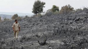 Šumski požari i Sirija: Pogubljeno 24 ljudi, osuđeni za izazivanje požara 2020.