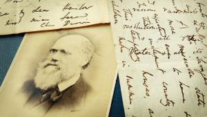 """Čarls Darvin - nova saznanja naučnika otkrivaju kako je nastala """"gnusna misterija"""