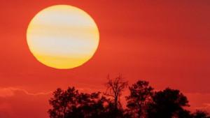 """Klimatske promene: Istraživači raspravljaju o """"najkritičnijem izveštaju"""" u poslednjoj deceniji – ali zašto je to važno za mene"""