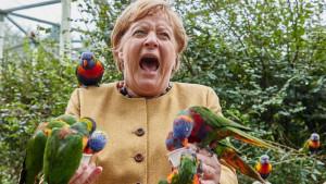 Izbori u Nemačkoj: Angela Merkel - karijera u fotografijama