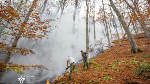 """Lokalizovan požar na Staroj planini: """"Žar sam gasio rukama i nogama"""