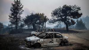 Grčka: Šumski požari za sobom ostavljaju crne šume