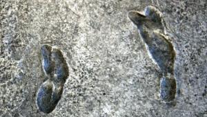 Nauka i praistorija: Misteriozni otisci džinovskog stopala i poreklo ljudske vrste