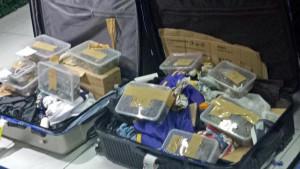 Aerodrom na Filipinima: Pokušali da prokrijumčare 1.500 kornjača - u koferu